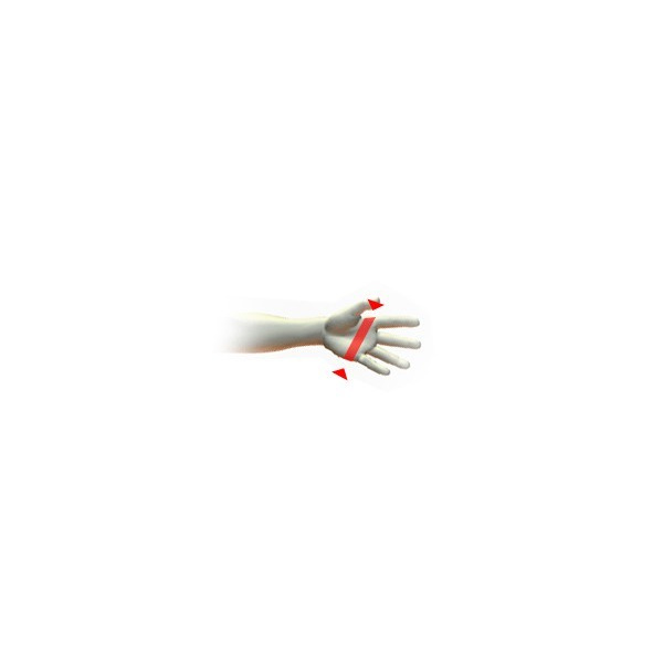 gant thinsulate