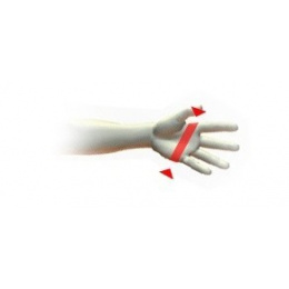 Peccary Man Gloves & Brown Cashmere - Picaros