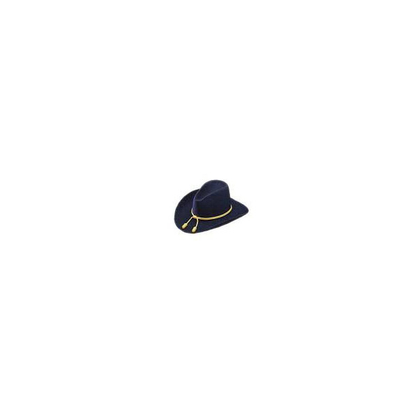 Chapeau confédéré officier - Wegener