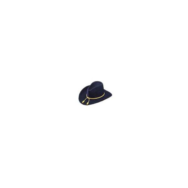Confederate officer hat - Wegener